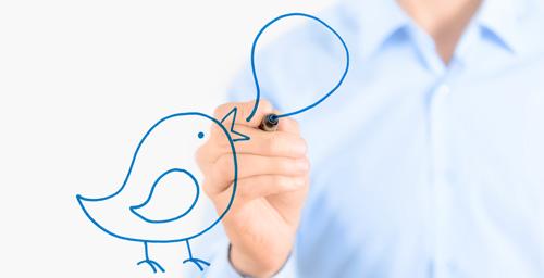 Twitter-Bird-Larry